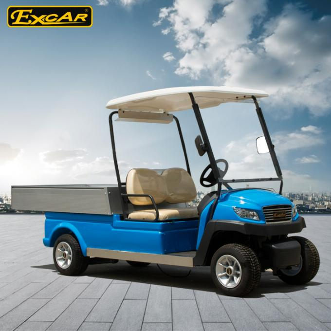 Blue Electric Utility Golf Cart Hotel Buggy Car For 2 Person