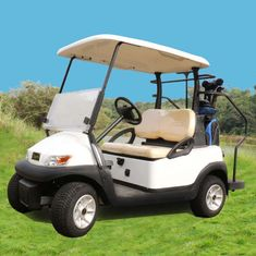 China Excar 48V Electric Golf Car Pearlized Trojan Battery Aluminum Chassis supplier