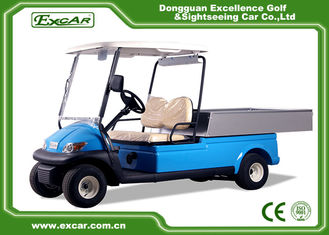 China 2 Seater Hotel Buggy Car , Electric Utility Golf Carts 100% Waterproof Accelerator supplier