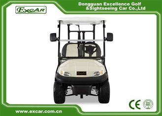 Street Legal Small Custom Electric Golf Carts For 2 Person , CE Approved