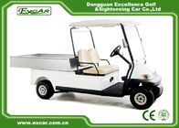 Trojan Battery Powered Electric Utility Carts 2 Seater Golf Cart Utility