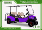 China 6 Seater Fuel Type Electric Passenger Car Purple With Italian Axle factory