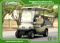 2 Passenger Electric Utility Carts / Cargo Golf Buggy Car With 350A USA Curties Controller
