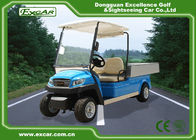 China 5kw Hotel Electric Golf Cart 350A USA Curties , Mini Electric Truck factory