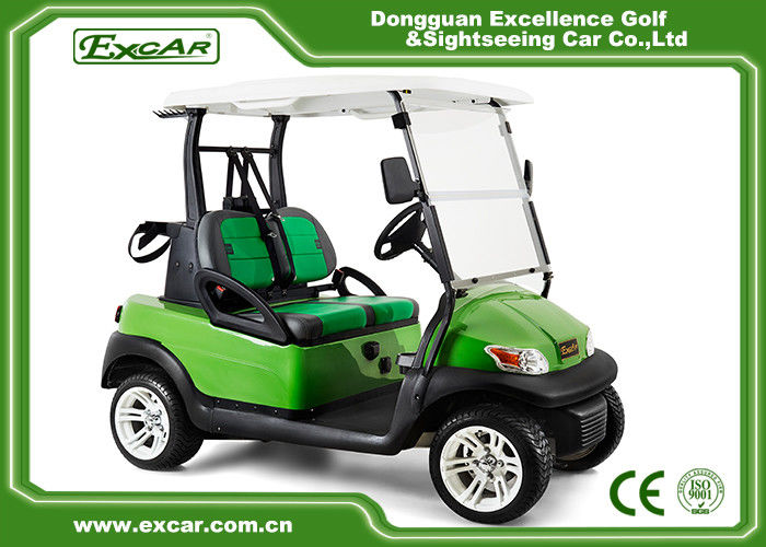 Customized Double Seat Golf Cart Double Color With Curtis